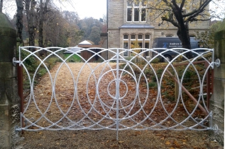 Modern double leaf gate