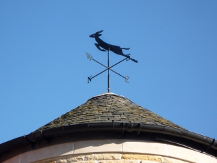 Springbok Weather Vane